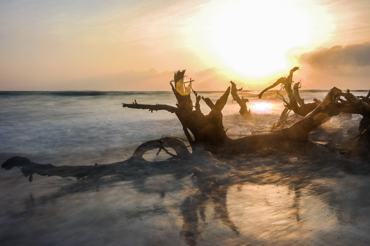 Drawn to Nature - & Painting it with Light (Mozambique - Sunrise)